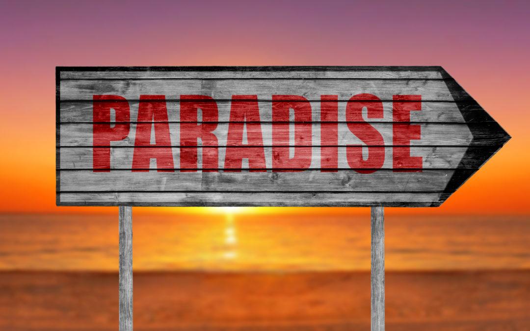 Biura podróży i wyszukiwarka ofert wakacyjnych; szukaj wczasów z nowymi kryteriami na wakacje 2018