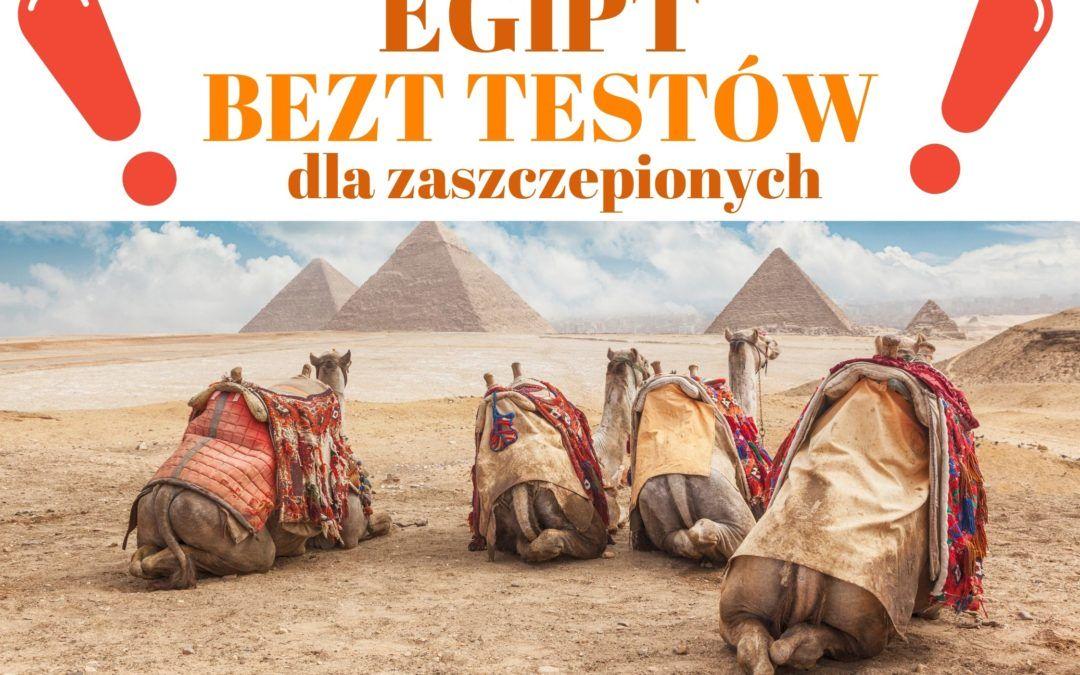 EGIPT – BEZ TESTÓW dla zaszczepionych !!